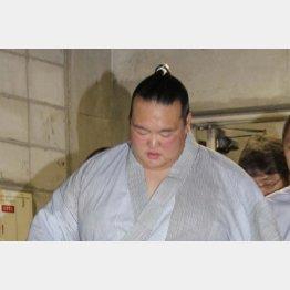 稀勢の里(C)日刊ゲンダイ