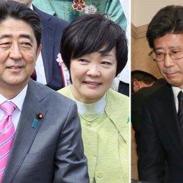 安倍首相夫妻と国税庁長官辞任会見を行った佐川宣寿氏