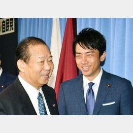 二階幹事長と小泉進次郎(C)日刊ゲンダイ