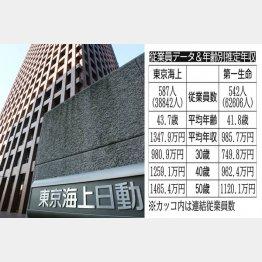 東京海上HDと第一生命HD(C)日刊ゲンダイ