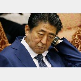 """事実上の""""指揮権発動""""…(C)日刊ゲンダイ"""