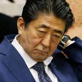 証拠隠滅の指示に値する 安倍首相の「議員も辞める」発言