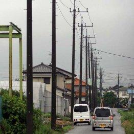 建設コンサルの「オオバ」 電柱地中化の前段階で大活躍