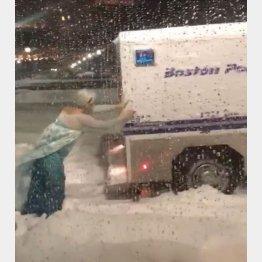 雪にはまったトラックを押すエルサ(フェイスブックから)
