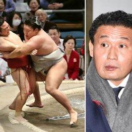 貴ノ岩(左)はせっかく勝ったのに師匠(JMPA)に見てもらえず…