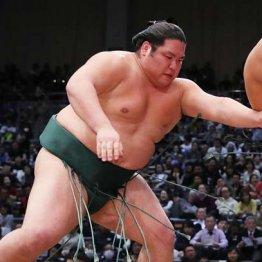 押し相撲一辺倒 錦木は名門・伊勢ノ海部屋で鍛えられた