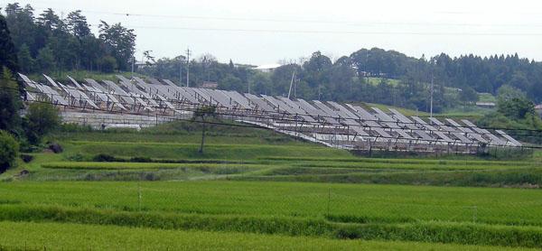設置率のトップは佐賀県、売電は期待できない(C)日刊ゲンダイ