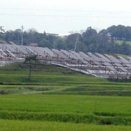 設置率のトップは佐賀県、売電は期待できない