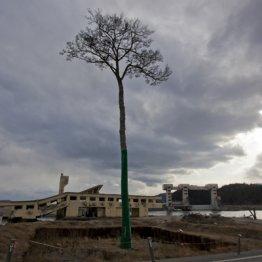復興と呼ぶには程遠い NHKスペシャルが伝えた被災地の現実