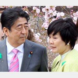 疑惑の首相では抜け出せない(C)日刊ゲンダイ
