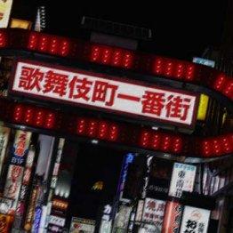 歌舞伎町で同棲していた