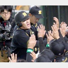 福留は開幕から好調キープ(後方は金本監督)/(C)日刊ゲンダイ