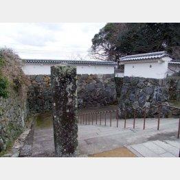 玖島城跡の石垣(C)日刊ゲンダイ