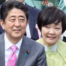増えつつある「怒れる若者」は日本の政治を変えられるのか