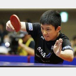 卓球アジア杯で世界ランク1位の樊振東に勝った試合でもチキータが冴えた(C)共同通信社