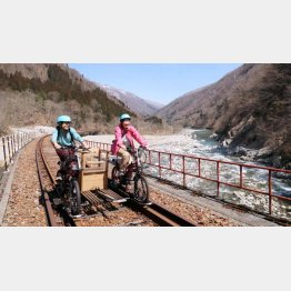 自然の中を電動自転車で疾走!(C)日刊ゲンダイ