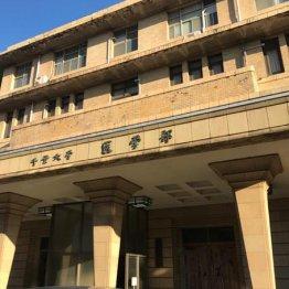 石井容疑者も千葉大医学部出身
