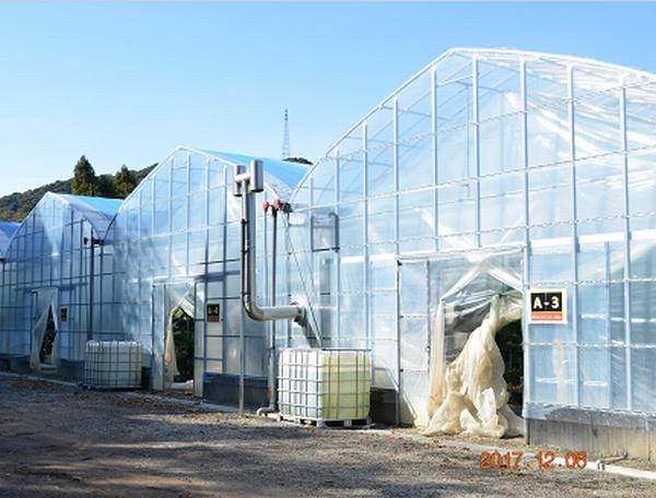 南九州市の「青果熟成加工物流センター」(提供)みんなの大家さん販売株式会社