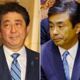 柳瀬元秘書官の「国会招致」で安倍政権はいよいよ黄信号