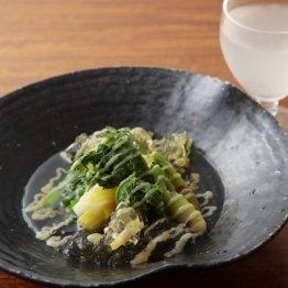 春野菜と山菜の酢味噌和えジュレ