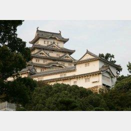 姫路城(C)日刊ゲンダイ