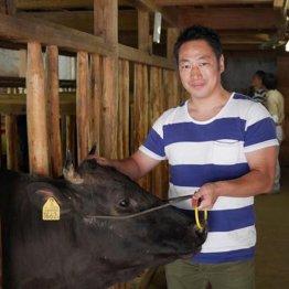 年間200食 「肉バカ。」著者が推薦する最高峰の牛肉料理