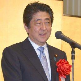 安倍首相はなぜ水を差すのか 米朝和解ならば日本も変わる