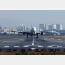 人気の航空関連(C)日刊ゲンダイ