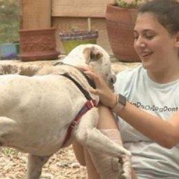 捨て犬に里親を…米13歳少女のマッチングサイトに称賛の声