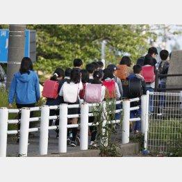 保護者に付き添われ、集団下校する小針小の児童ら(C)共同通信社