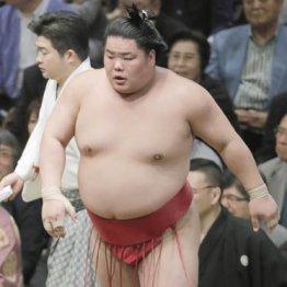 「エレベーター力士」は過去 大栄翔勇人は今が番付最高位