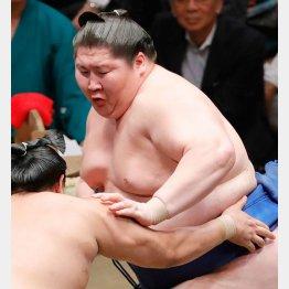 幕内で最も重い193センチ、225キロ(C)日刊ゲンダイ