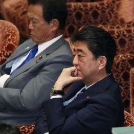 「蚊帳の外」の使用禁止で日本はハブられなくなるのか?