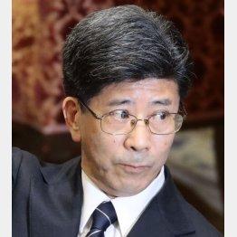 虚偽答弁の可能性高まる(C)日刊ゲンダイ