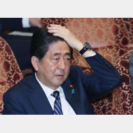 「外交の安倍」の面目を保てるか/(C)日刊ゲンダイ