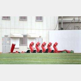 日大アメフト部のグラウンド施設(C)日刊ゲンダイ