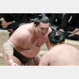 下品な横綱(C)日刊ゲンダイ