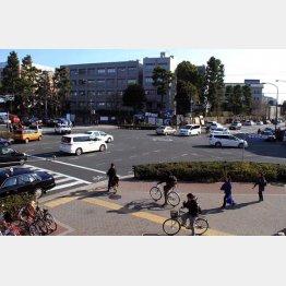 京都大学を望む百万遍交差点(C)日刊ゲンダイ