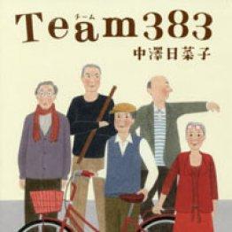 「Team383」中澤日菜子著