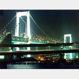 東京湾をクルージング(C)日刊ゲンダイ