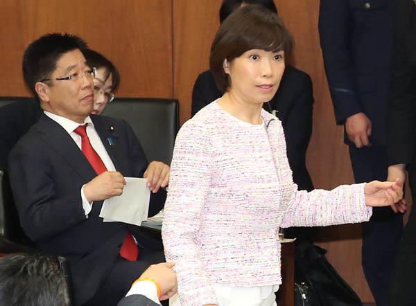 25日、厚労委での堀内詔子議員(C)日刊ゲンダイ