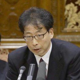 特区担当だった藤原豊審議官(C)日刊ゲンダイ