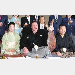記念撮影で鯛を掲げる栃ノ心(C)日刊ゲンダイ