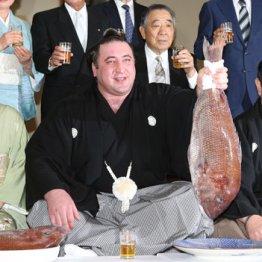 「新大関」栃ノ心が誕生 理事会で異論出ず満場一致の昇進