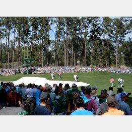 練習ラウンドに1日5万人もの観客が殺到するマスターズ(提供写真)