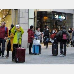 個人ビザ解禁拡大で来日した中国人観光客が標的に(C)日刊ゲンダイ