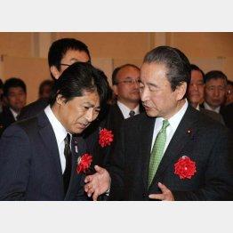 田村憲久政調会長代理(左)と鴨下一郎元環境相(C)日刊ゲンダイ