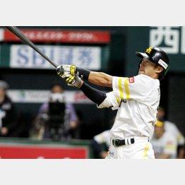 外国人顔負けの本塁打を放つソフトバンク・柳田(C)日刊ゲンダイ