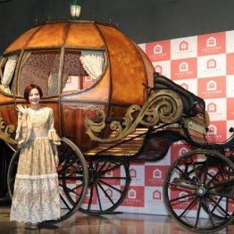スルガ銀行<上>「かぼちゃの馬車」への不正融資疑惑なぜ?