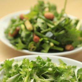 【老虎菜】東北料理には欠かせない 羊料理の良き相棒